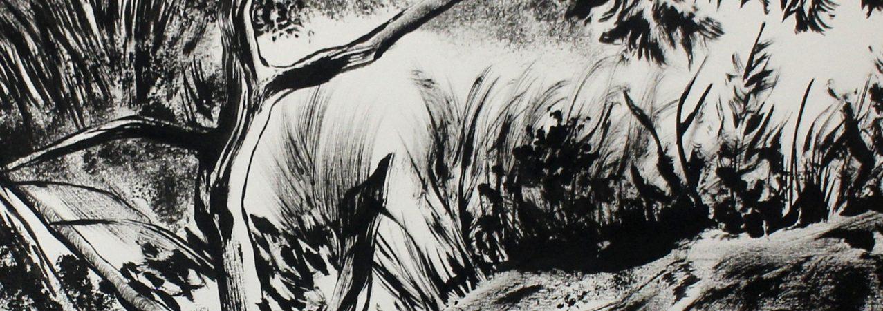 Retour sur l'atelier «Paysage à la brosse sèche» animé par Laurent Claret le 22 septembre 2018