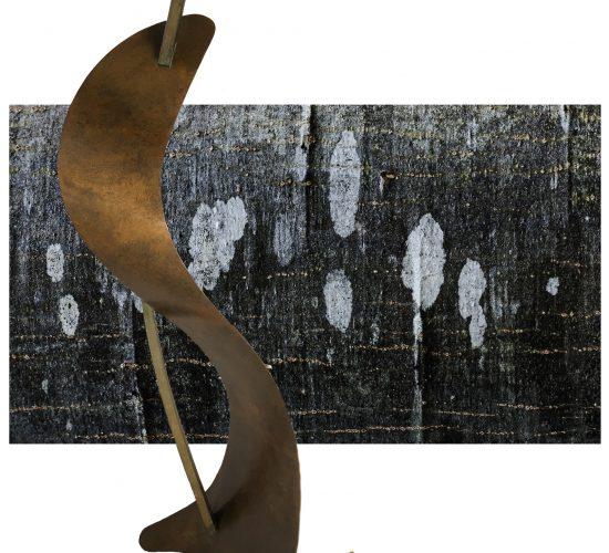 Jean-Marie Viaud, photographies & Bruno Renard, sculptures