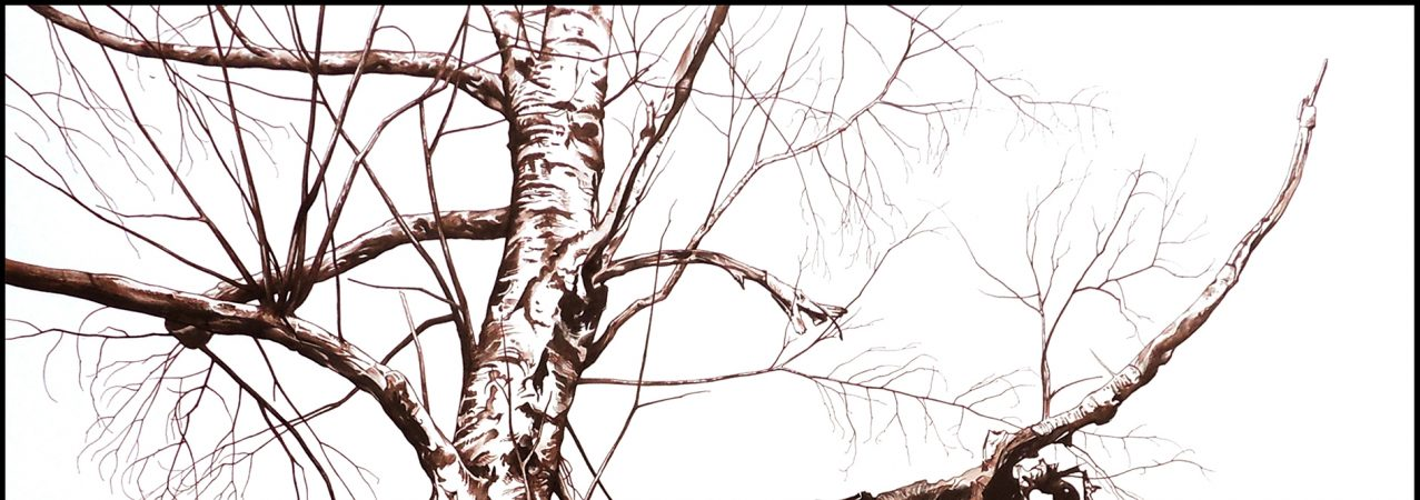 «Thrénodie pour un arbre» – Laurent Claret