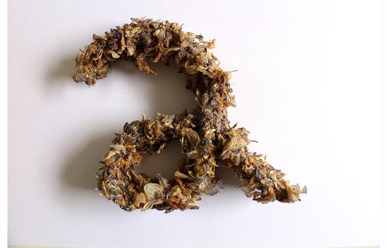 sculpture végétale, fleurs de glycine