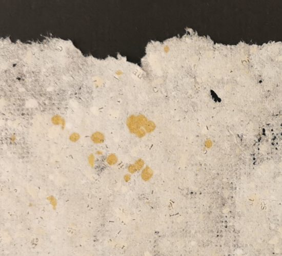 Retour sur l'atelier «Et ex» (faire avec) – fabrication de papier recyclé et installation (20 et 27 mars 2021) – Nathalie Carrié