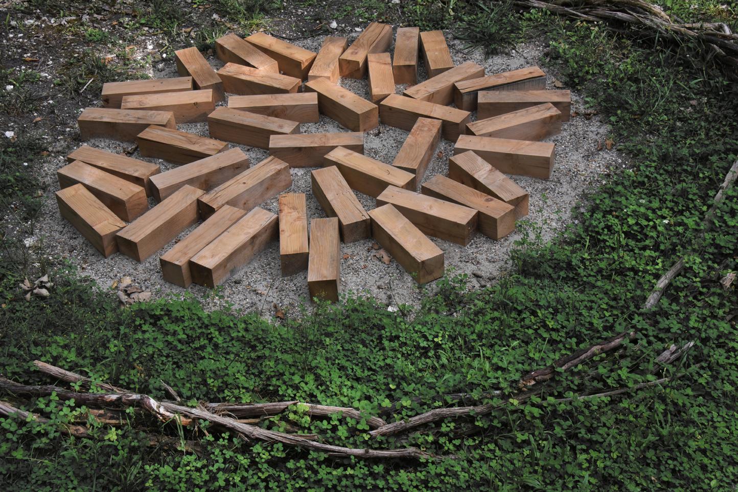 «GAIA Natura» – exposition de Louis Viel