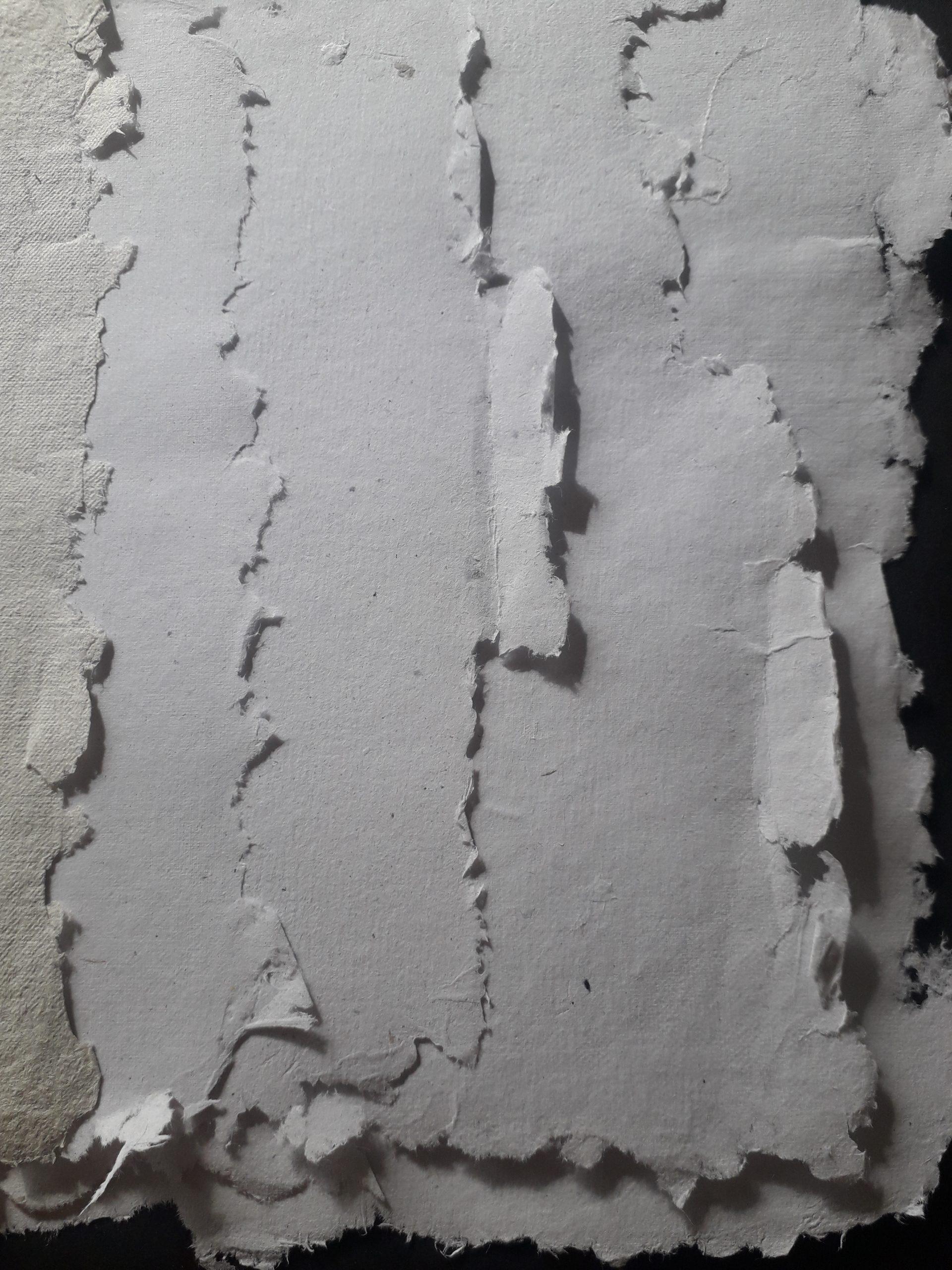 «Et ex» fabrication de papier recyclé (initiation et approfondissement) – nathalie carrié